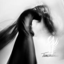 INDIGO RAVEN - Looking for Transcendence (CD)